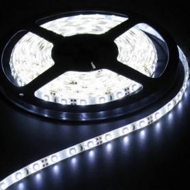 5M Koud Wit Led Strip 60LED/M IP65 Wit PCB SMD3528 AL044