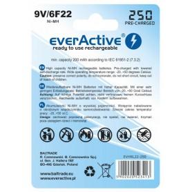 EverActive - everActive Ni-MH 9V 6F22 250mAh Silver Line - Andere formaten - BL169-C www.NedRo.nl