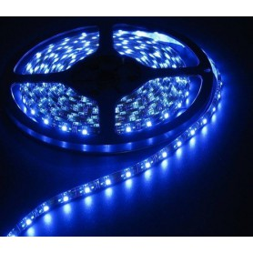 Blue 12V LED Strip 60LED/M IP65 SMD5050