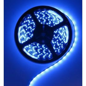 Blue 12V LED Strip 60LED IP65 SMD3528