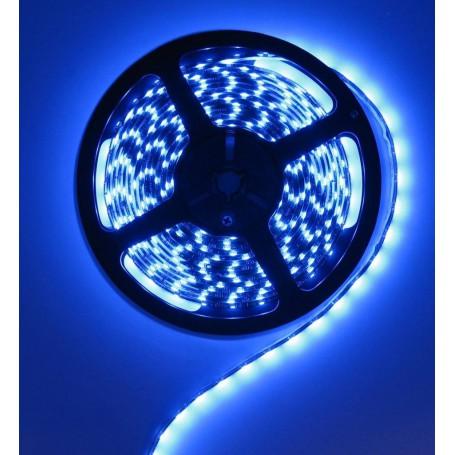 unbranded, Blue 12V LED Strip 60LED IP65 SMD3528, LED Strips, AL200-8-CB