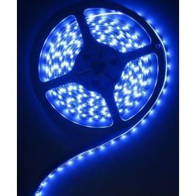 NedRo - Blauw 12V IP65 SMD5630 Led Strip 60LED per meter - LED Strips - AL155-4M www.NedRo.nl