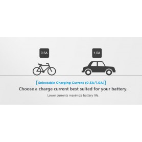 XTAR - XTAR VC2 Plus Master battery charger - Battery chargers - NK194-C www.NedRo.us