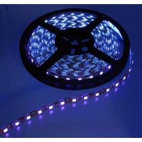 UV Ultraviolet 12V Led Strip 60LED IP20 SMD3528 - Black PCB