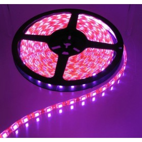 5M Roze Led Strip 60LED/M IP65 Wit PCB SMD3528 AL079