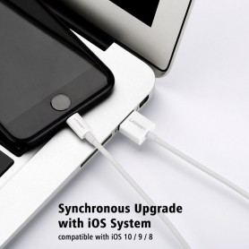 UGREEN, Lightning USB Sync & Oplaadkabel voor iphone, ipad, itouch, iPhone datakabels, UG414-CB, EtronixCenter.com