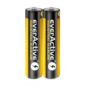 EverActive - 40x-Pack everActive Industrial LR03 / AAA / R03 1.5V 1100mAh alkaline battery - Size AAA - BL350