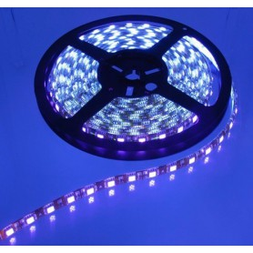 NedRo - IP20 SMD5050 UV Ultraviolet 12V Led Strip 60LED Black PCB - LED Strips - AL008-CB