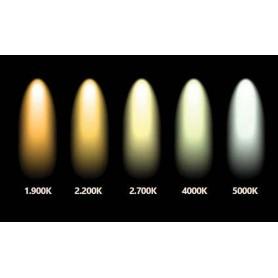 Calex, 2x CALEX G9 2W COB LED 220-240V 200LM 4000K COOL WHITE, G9 LED, CA-473851