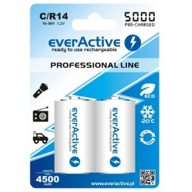 EverActive - R14 C 5000mAh Rechargeables everActive Professional - Size C D and XL - BL157-CB www.NedRo.us
