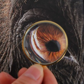 NedRo - Zak Vergrootglas 5x-Zoom Lens met 44cm ketting - Loepen en Microscopen - AL063-CB www.NedRo.nl